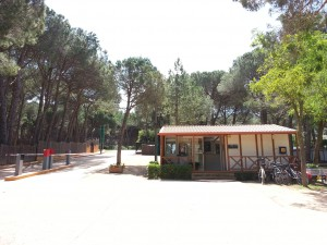 Reception and high tech gates at Camping Begur